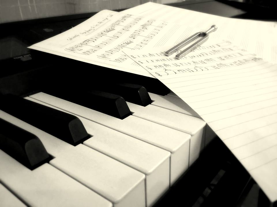 Harmonikkapaja